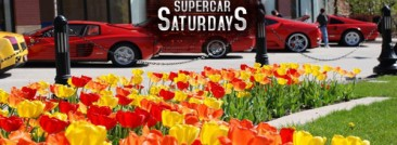 Supercar Saturdays 2013